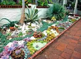 cactus garden outdoor cactus garden design u mini small cactus garden design u inspiration gallery inspiration cactus garden