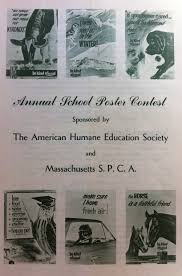 persuasive essay on stopping animal cruelty animal abuse essays stop animal abuse american humane association