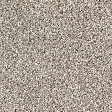 LifeProof Stylish Form Color Mysterious Twist 12 ft Carpet