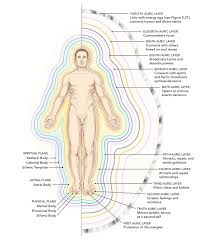 Body Regeneration Chart A Complete Guide To The Human Energy Fields And Auric Body