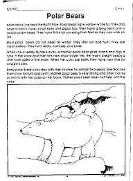 Beary Bears: Teachers Activities