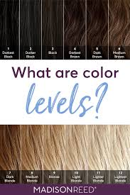 Generally, if more melanin is present, the color of the hair is darker; Dear Color Crew What Level Is My Hair Boxed Hair Color Brown Hair Color Chart Brown Hair Levels