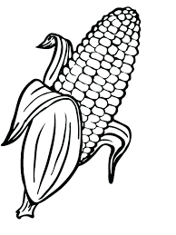 Corn Coloring Pages Printable 12 11683