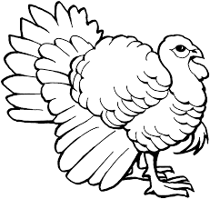 Coloring Pages Thanksgiving Free Turkey Coloring