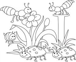 Spring Coloring Pages Spring Bugs Coloringstar