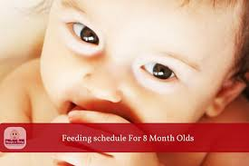 Which Food Can Be Given For 8 Months Baby A Sample Food