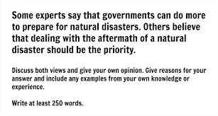 essay natural disasters government disaster management