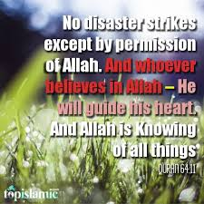 Every single day in our lives is a beautiful combination of best possible humanly efforts and allah's will and his help. 15 Motivational Verses From The Quran Top Islamic Blog