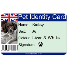 Card Pet Action Id Retail -