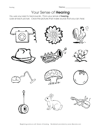 Science Worksheets Science Activity Worksheets Kindergarten Science ...