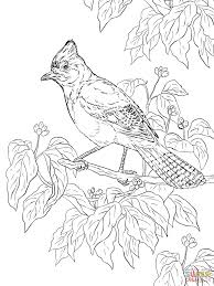 Small Picture Lovely Realistic Coloring Pages 83 For Your Coloring Print With