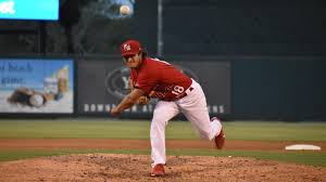 Minor league report: Austin Warner finding a groove with AA Springfield |  Cardinal Beat | stltoday.com