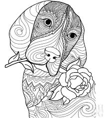 Some tips for printing these coloring pages: 24 Free Pet Coloring Pages Better Homes Gardens