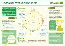 Lysosomal Storage Disorders Nature Reviews Disease Primers