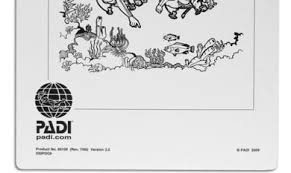 Padi Dive Chart Pdf Padi Products Brochure Pdf Free Download