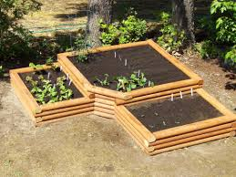 advantages of raised bed garden