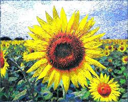 sunflower metal art sunflower wall art art sunflower wall art sunflower wall art castle and rye sunflower metal art