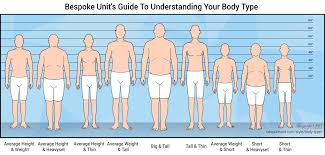 Guys Height And Weight Chart The Ultimate Guide To Male Body Types Understand Your