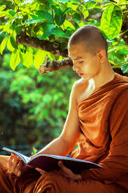 Free Images : person, sunlight, flower, portrait, sitting, autumn,  buddhist, buddhism, religion, child, temple, beauty, spirituality, bhikkhu,  theravada monk, photo shoot, human positions, monk reading, monk chanting,  young monastic, young monk ...