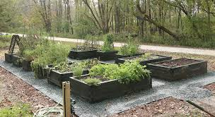 the ultimate guide to raised beds the