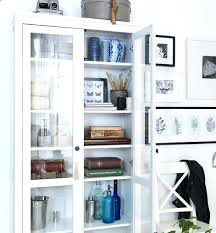 ikea glass door cabinet bookcase pretty things d in glass door cabinet in white glass door