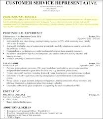 Profile Resume Sample Professional Examples Template Statement On