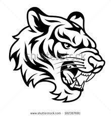 tiger black and white drawing. Unique White Roaring Tiger Black And White Drawing  Photo4 And Tiger Black White Drawing S