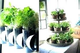 home herb garden in home herb garden home depot herb garden herb garden starter in home home herb garden