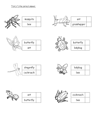 English preshool worksheet