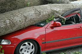 when to cut comprehensive and collision from your car insurance quote
