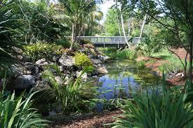 gardening south florida style mounts botanical garden tropical fruit festival