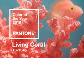 Pantone Color Of The Year 2019 Palette Exploration Living