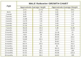 Growth Chart Fetal Length And Weight Week By Week 12 True Average Baby Size And Weight Chart