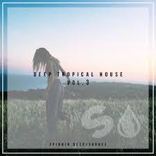 Deep Tropical House Vol 3 Spinnin Deep Source By James