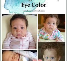 Eye Colour Prediction Chart Baby Eye Color Prediction Heart Of Deborah