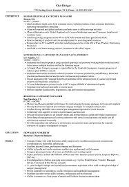 Resume Category Examples Regional Category Manager Resume Samples Velvet Jobs 2
