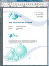 Example Of Franchise Franchise Selling Sample Proposal Business Proposal