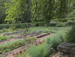 Kitchen Garden Kitchen Gardens Dumbarton Oaks