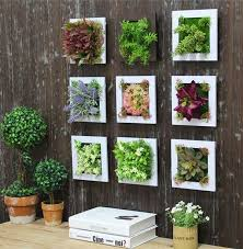 gorgeous succulent best succulent wall art