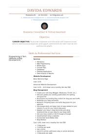 Real Estate Virtual Assistant Resume samples