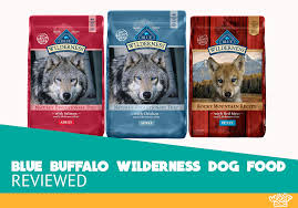 Blue Buffalo Wilderness Dry Dog Food Review Our Review For