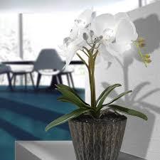 Led Deko Lampe Orchidee Blumen Topf Tisch Leuchte Weiß Fensterbank