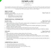 Resume Examples For Cashier Impressive Cashier Resume Examples Retail Store Cashier Resume Sample Delivery