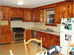 Kitchen Cabinets Refacing Diy Magnificent Diy Refinish Kitchen Cabinets Jadeproductions