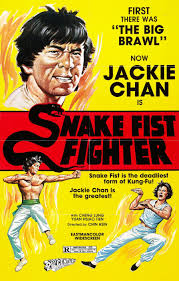 Chen snake fist kung fu