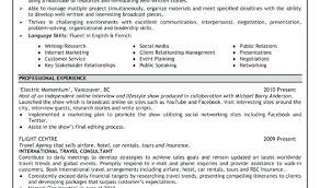 Example Of A Good Resume Cool Examples Of Great Resume Gyomorgyuru