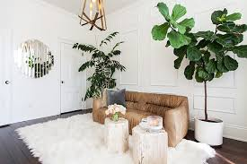 10 simple rules for taking care of a sheepskin rug