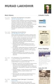 Business Development Consultant Resume samples - VisualCV resume ...
