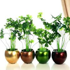 indoor planting containers house plant pots interior plant pots indoor plant pots indoor plant pot cute