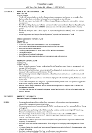 Sample Security Consultant Resume Security Consultant Resume Samples Velvet Jobs 2